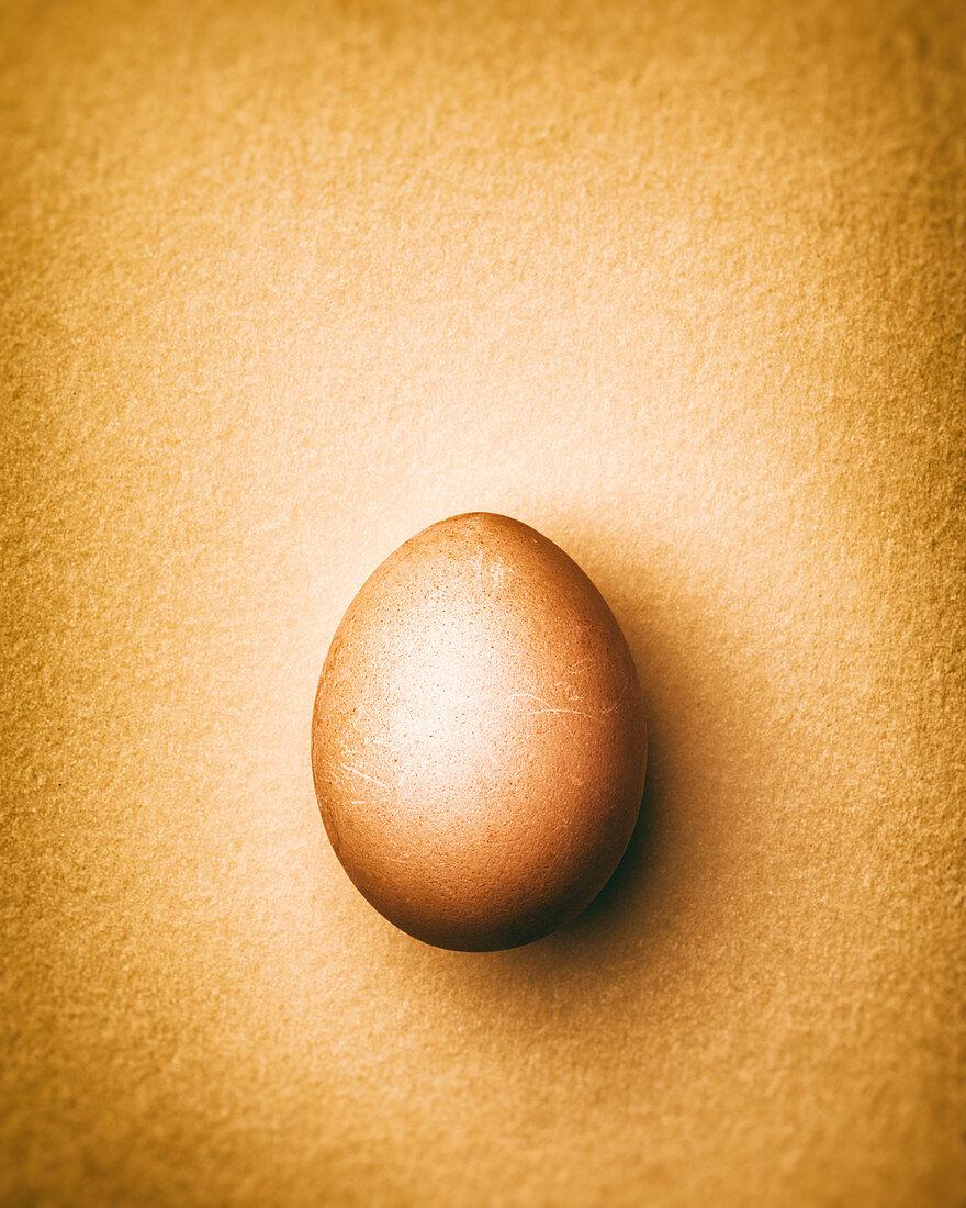 Brown chicken egg on a light orange background