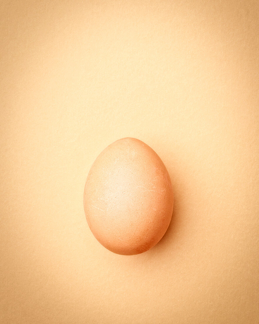 Brown chicken egg on an apricot-colored background