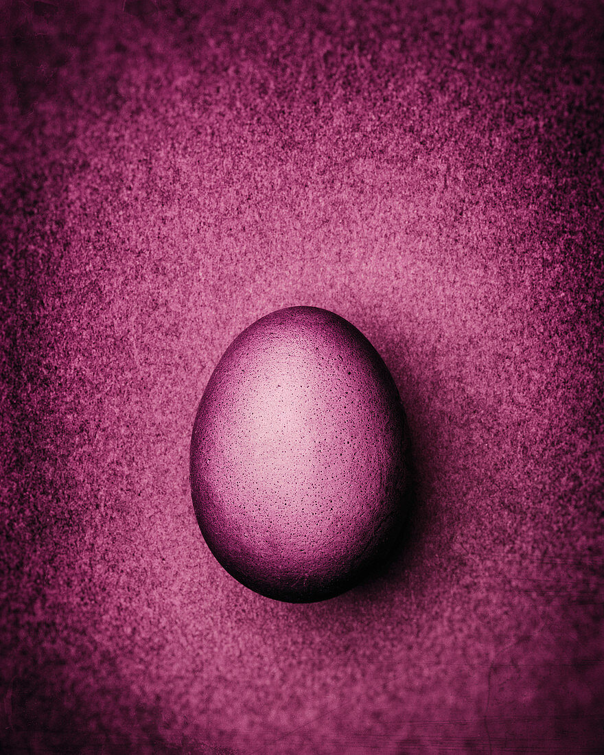 Dusty pink Easter egg on a dusty pink background