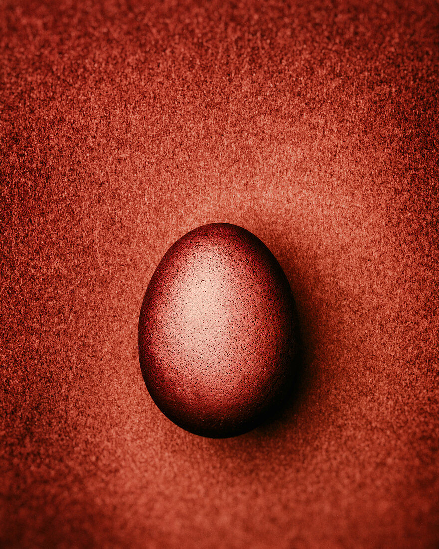 Rust-red Easter egg on a rust-red background
