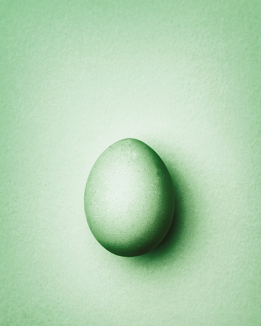 Pale green Easter egg on a pale green background