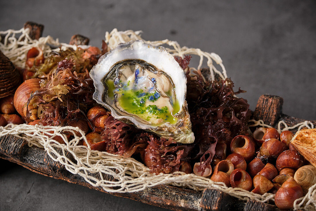 Oyster in shell served in plate with various seafood ingredients