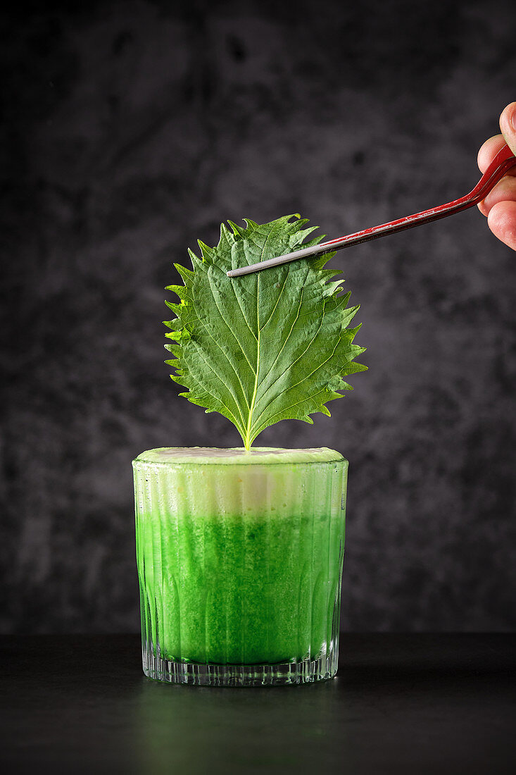 Adding green leaf into glass with fresh detox beverage