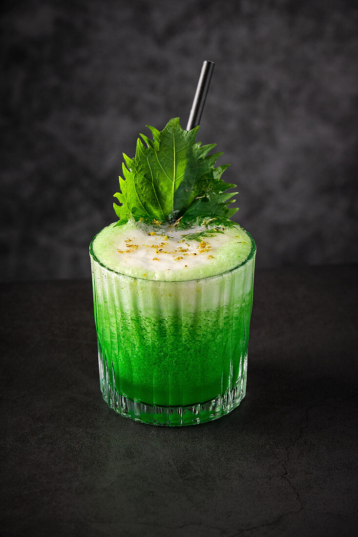 Glass of green appetizing cocktail with froth