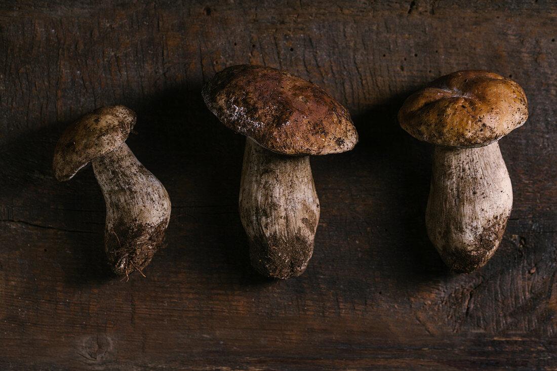 Fresh porcini mushrooms on wooden table