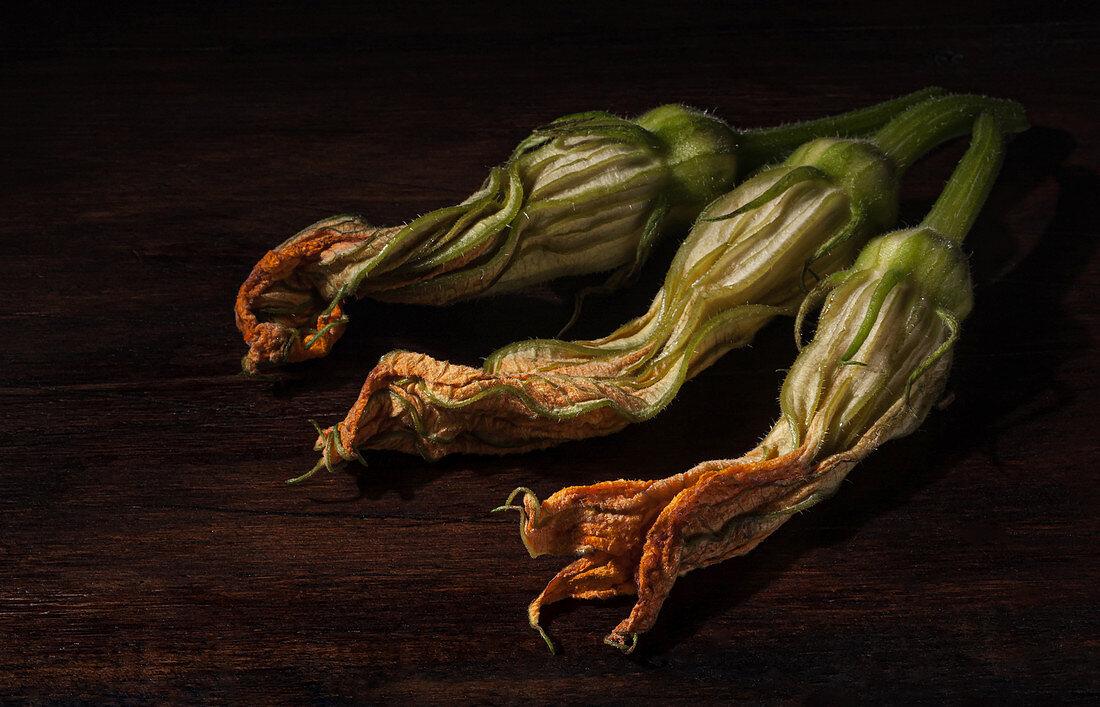 Fresh edible zucchini flowers on dark wooden surface