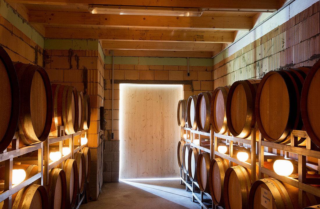 Jacob Duijn, barrique cellar, Baden, Germany