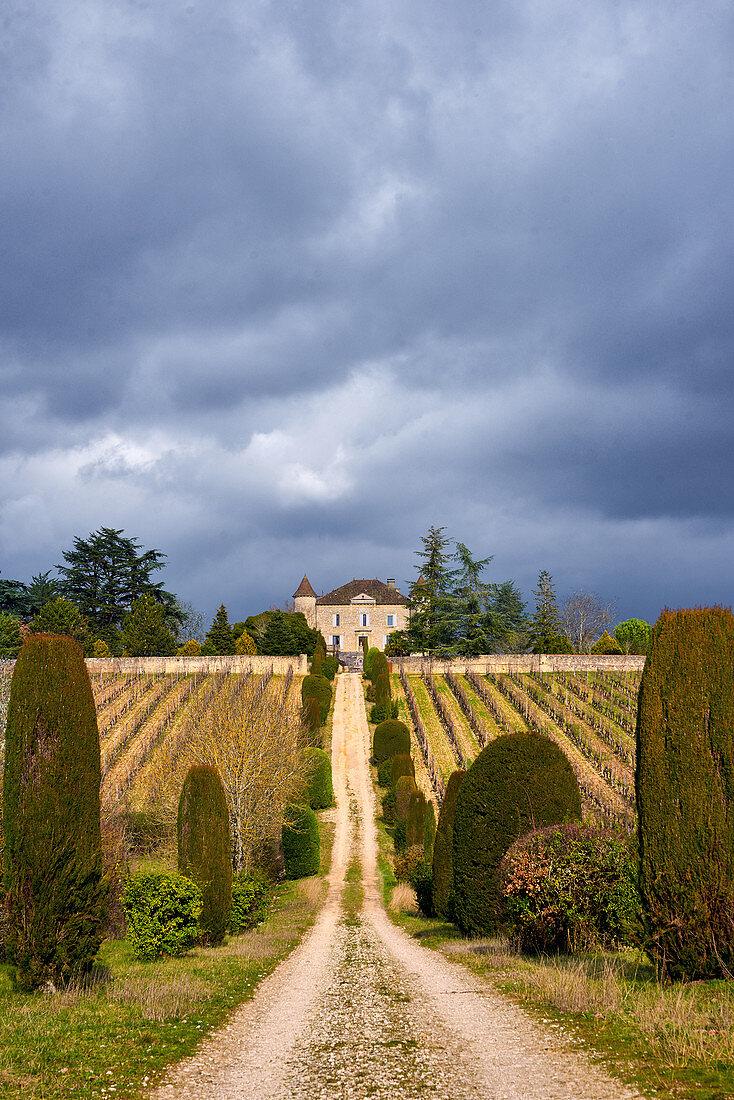 Vineyards, Chateau de Chambert, Cahors, France