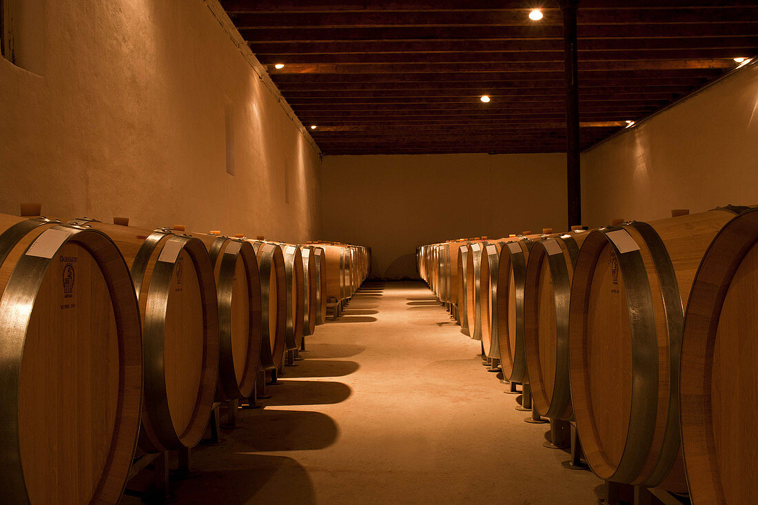 Barrique cellar, Chateau Eglise Clinet, Pomerol, Bordeaux, France