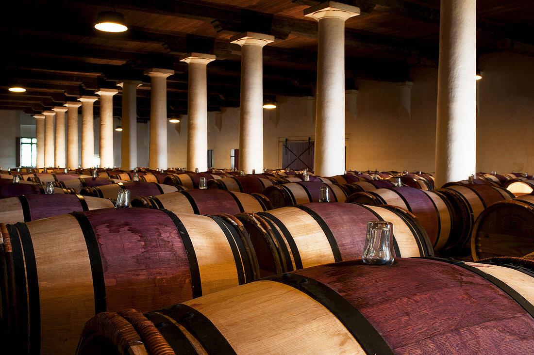 Barrique cellar, Chateau Margaux, Medoc, Bordeaux, France