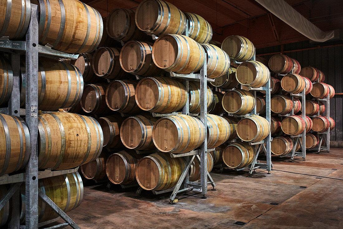 Barrique barrels, Maison Louis Latour, Burgundy, France