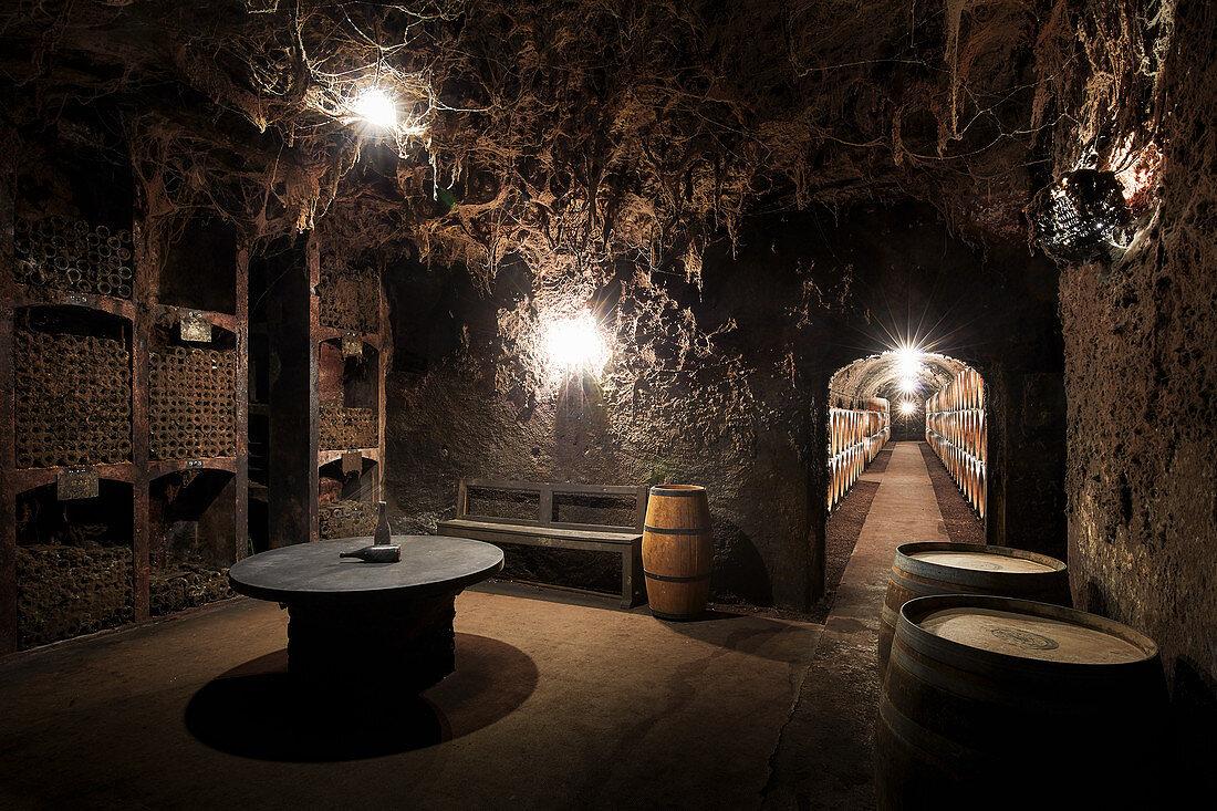 Natural cellar, Maison Louis Latour, Burgundy, France