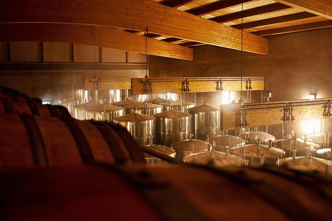 Pressing room, Knipser vineyard, Palatinate, Germany