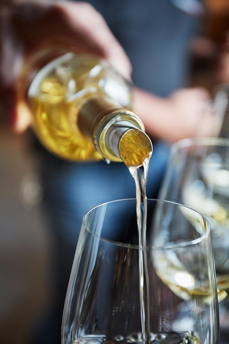 Wine tasting, Château Lafaurie Peyraguey, Sauternes, Bommes, France