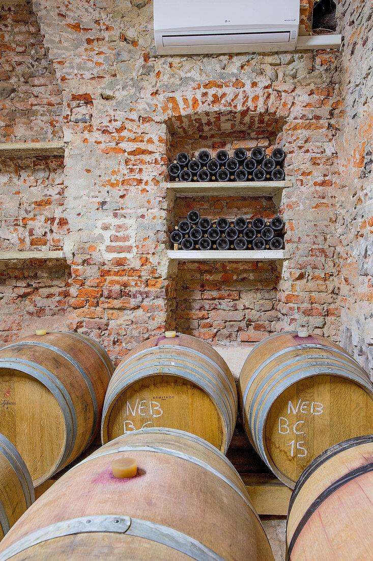 Barrique barrels, Le Pianelle vineyard, Piedmont, Italy
