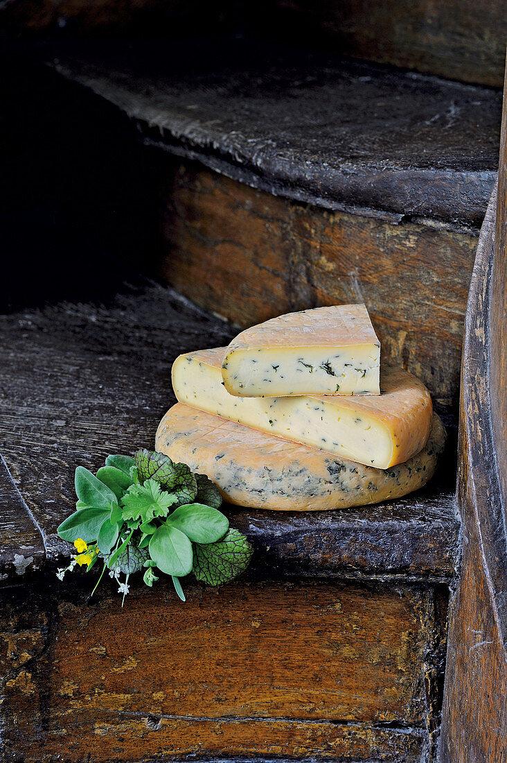 Spielweg alpine cheese