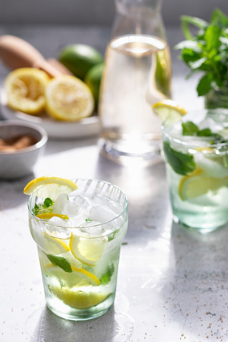 Lime and lemon spritzer