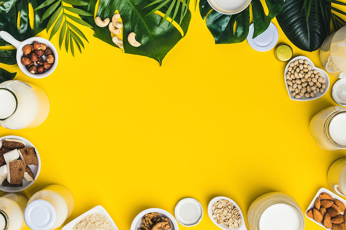Dairy free milk substitute drinks and ingredients on yellow background