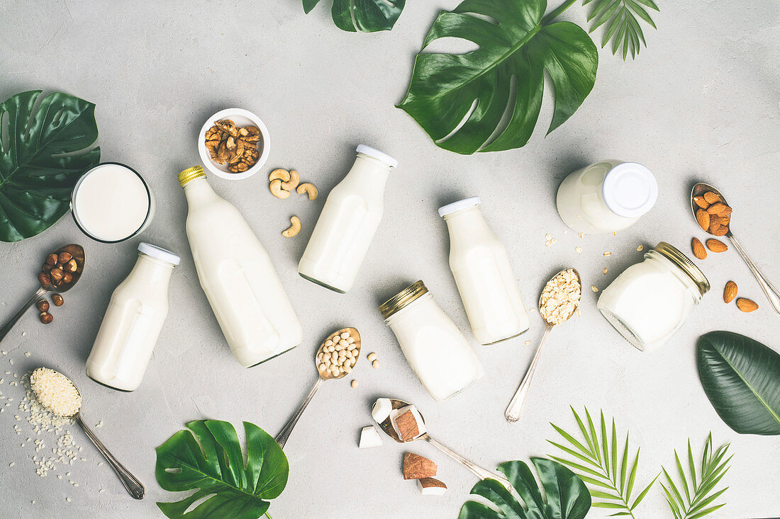 Verschiedene Milchersatzgetränke und Zutaten
