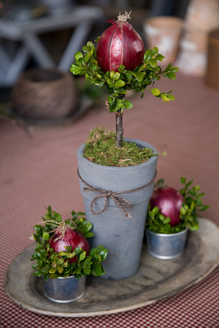 Decoration idea with a pot and red onions