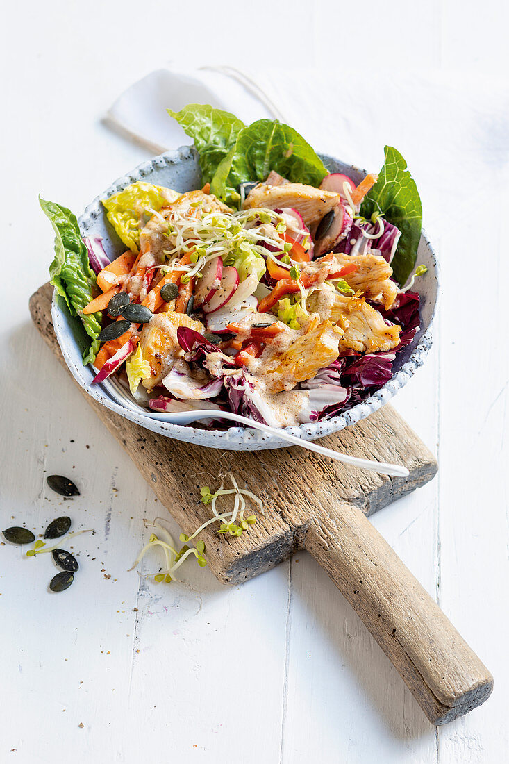 Chicken salad with almond dressing, seeds and sprouts