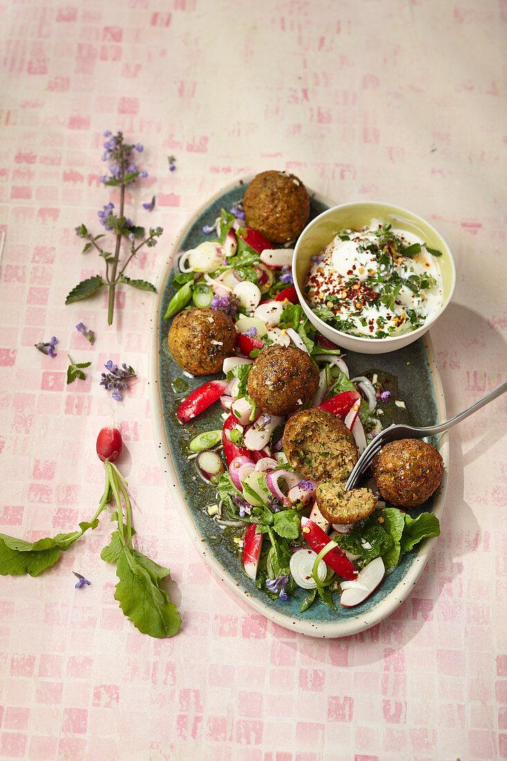 Zucchinifalafel mit Kräuter-Dickmilch und Radieschensalat