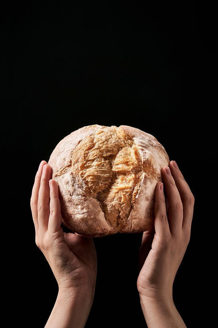Hands holding freshly baked loaf of bread