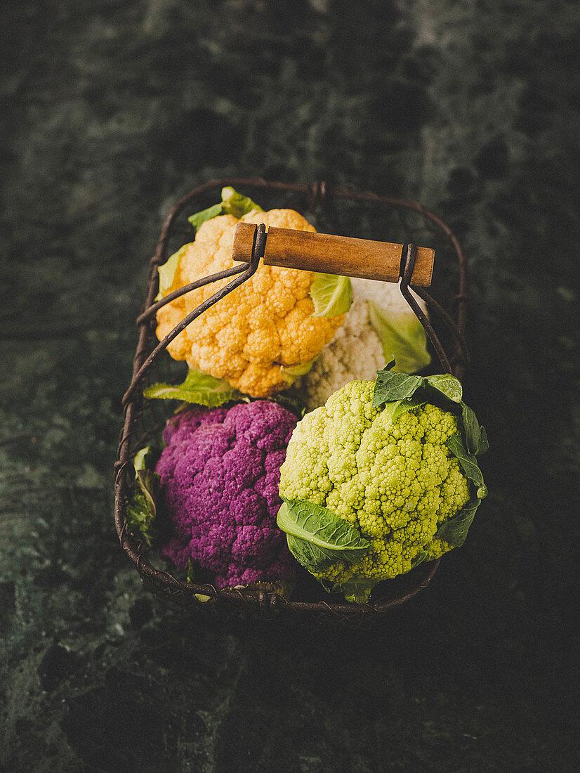 Purple, orange, white and green cauliflower in a wire basket