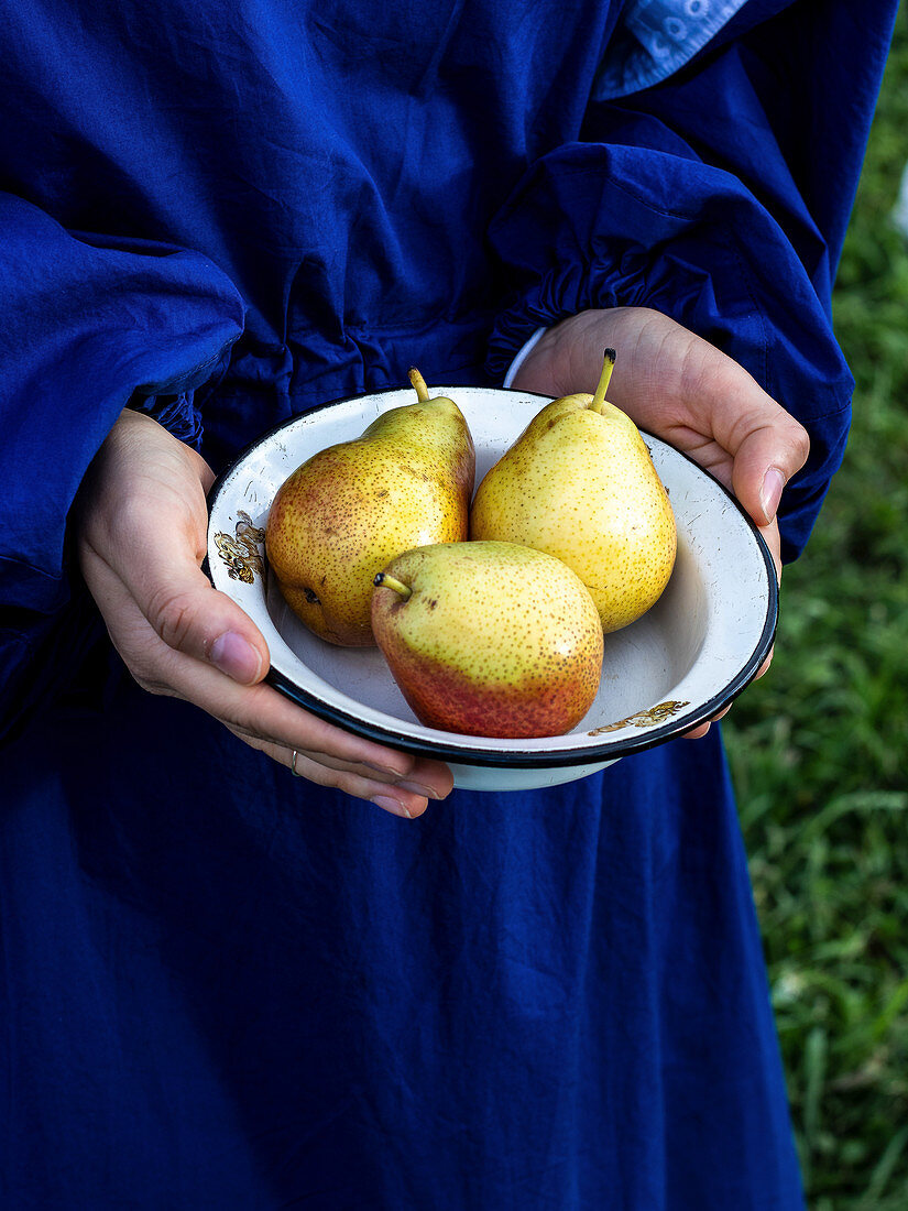 Woman holds an enamel bowl with pears