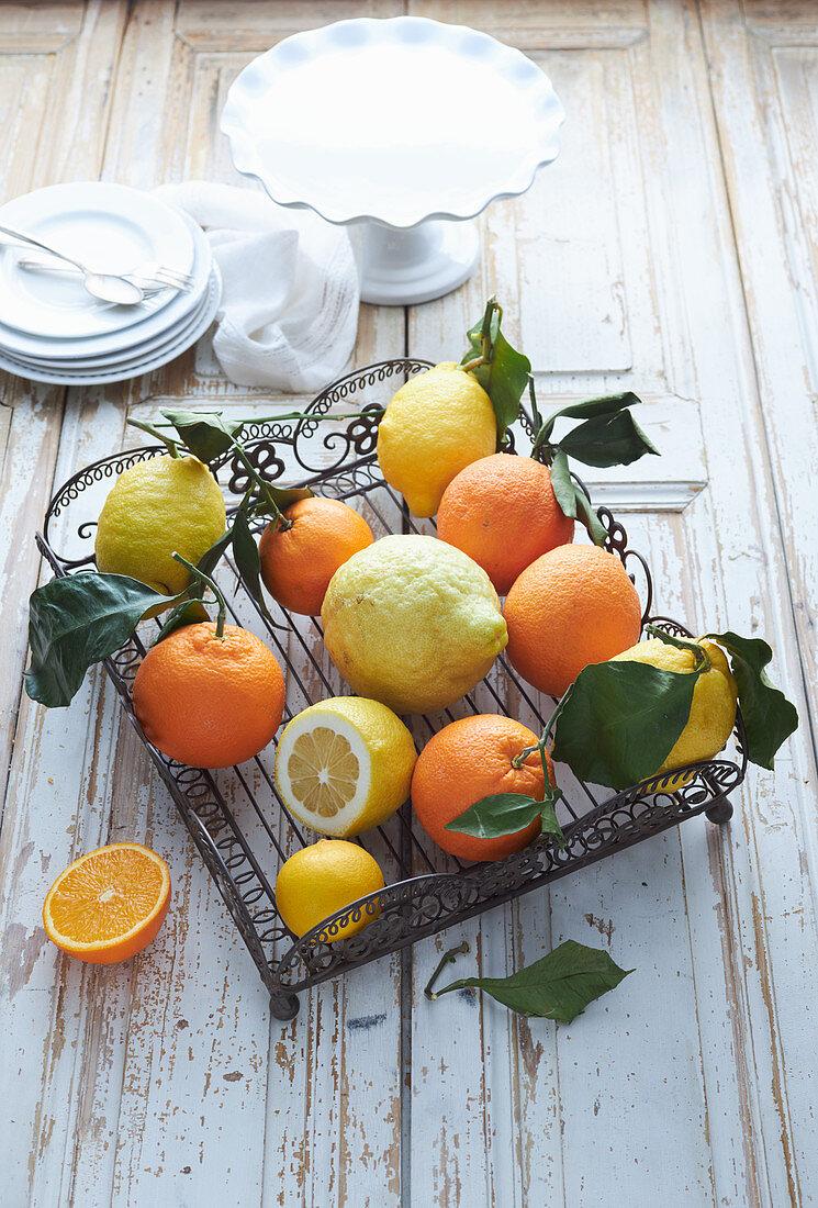 Selection of citrus fruit