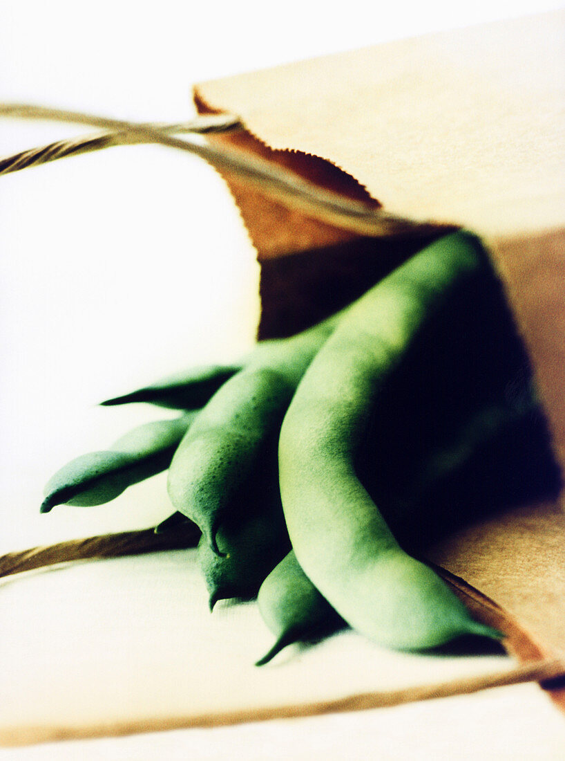 Fresh green beans in kraft paper bag