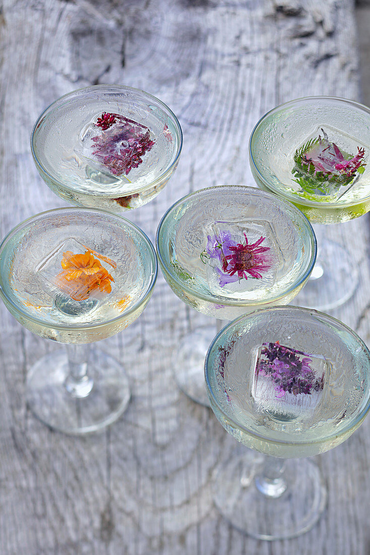 Five cocktail glasses with flower ice cubes on woodenboard outside