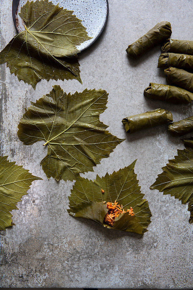 Koupepia with stuffed vine leaves