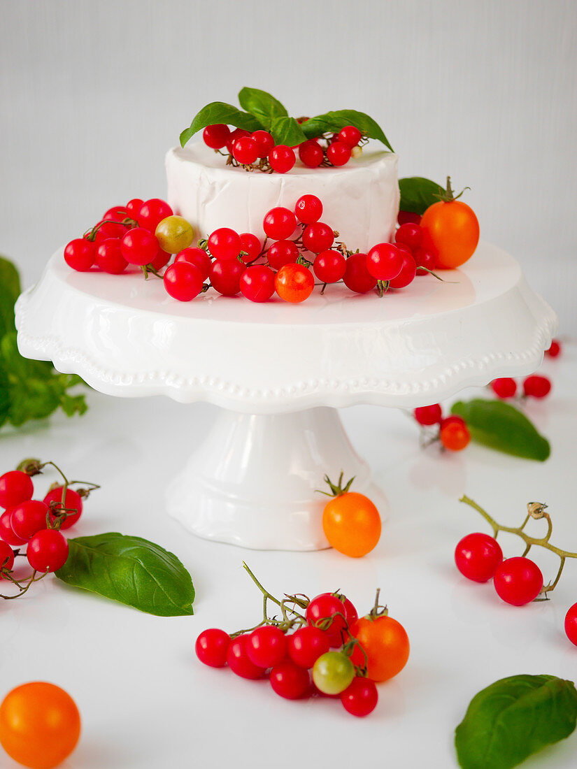 Camembert with different kinds of tomatoes and basil