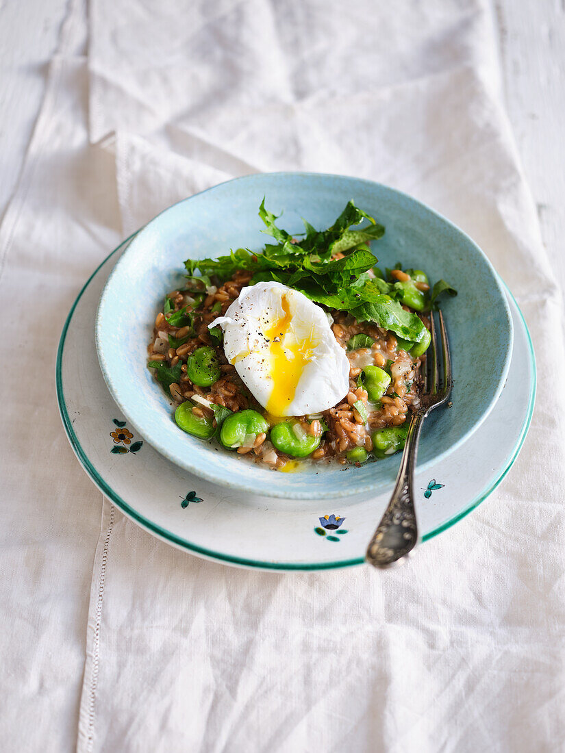 Spelt risotto with broad beans, dandelion and poached egg