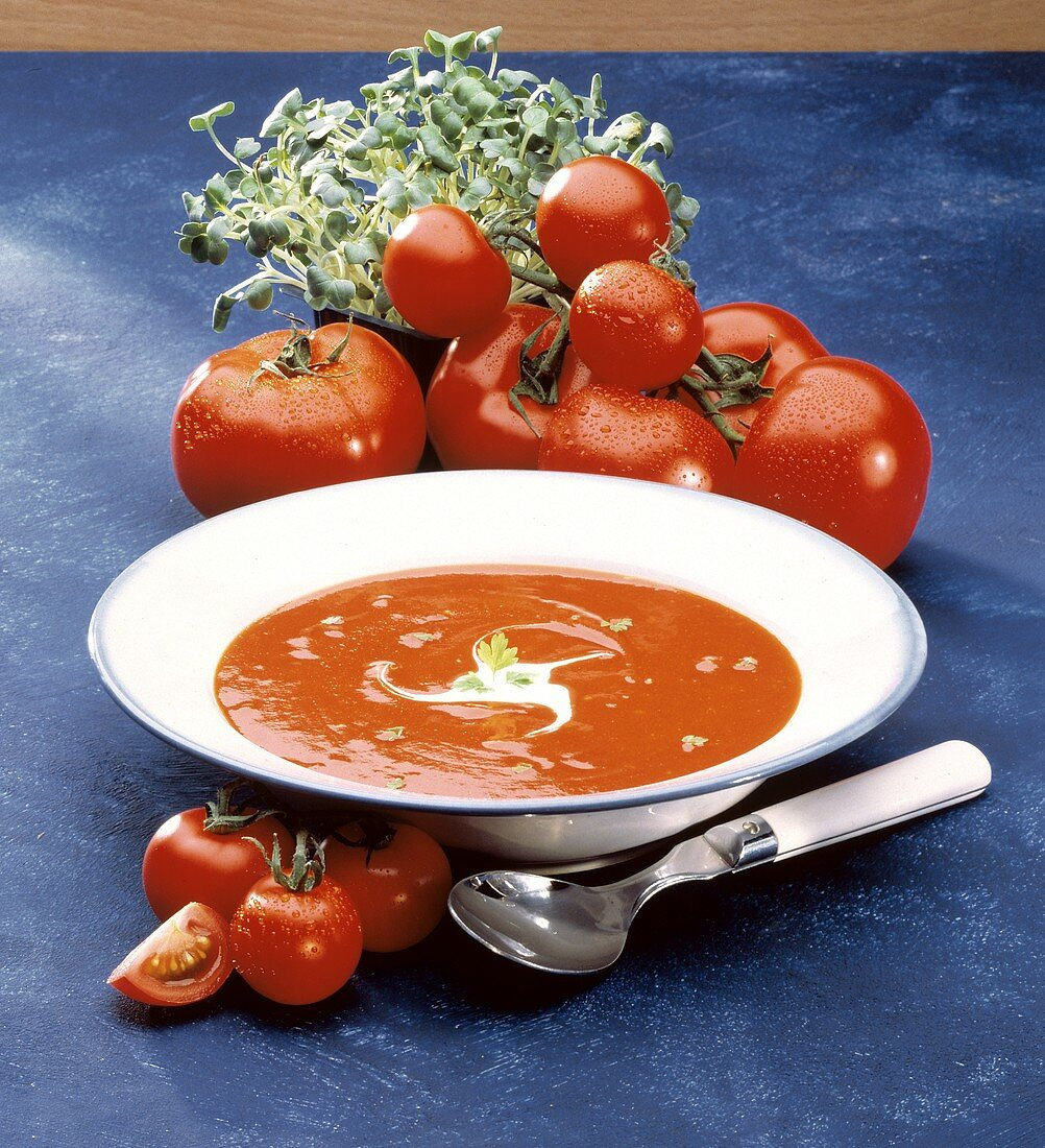 Bowl of Tomato Soup with Ingredients