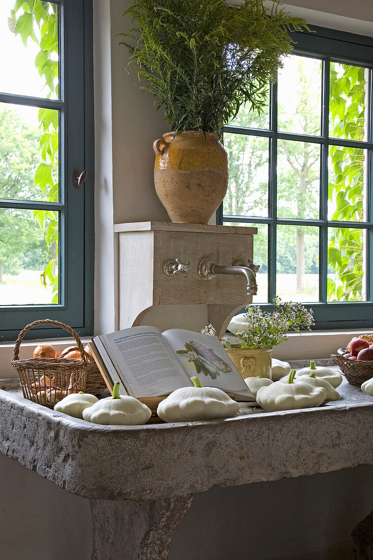 Pattypan squash in old, shallow stone sink in country house