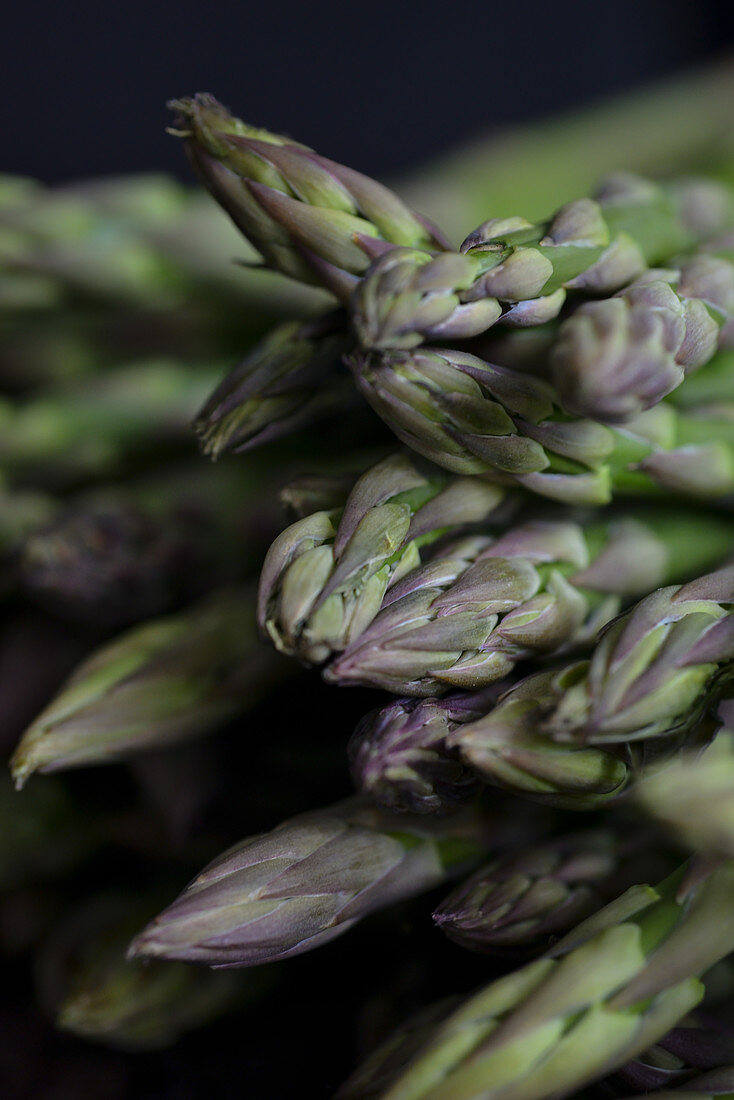 Green asparagus dark background