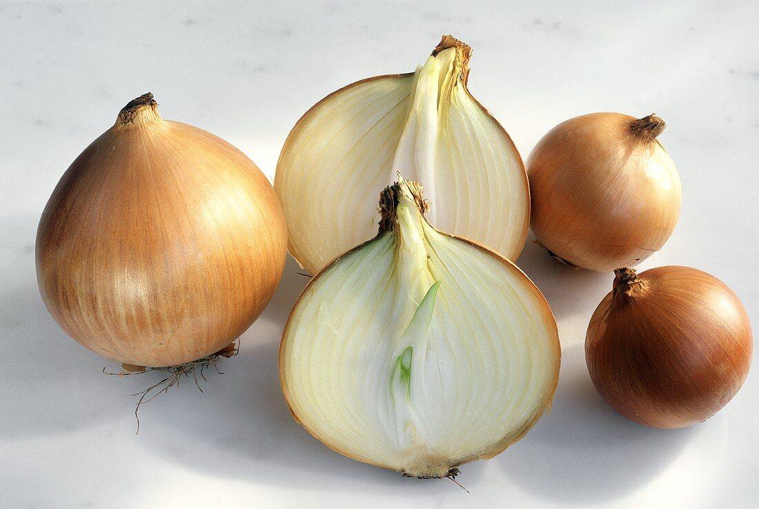Spanish Onions; One Cut in Half