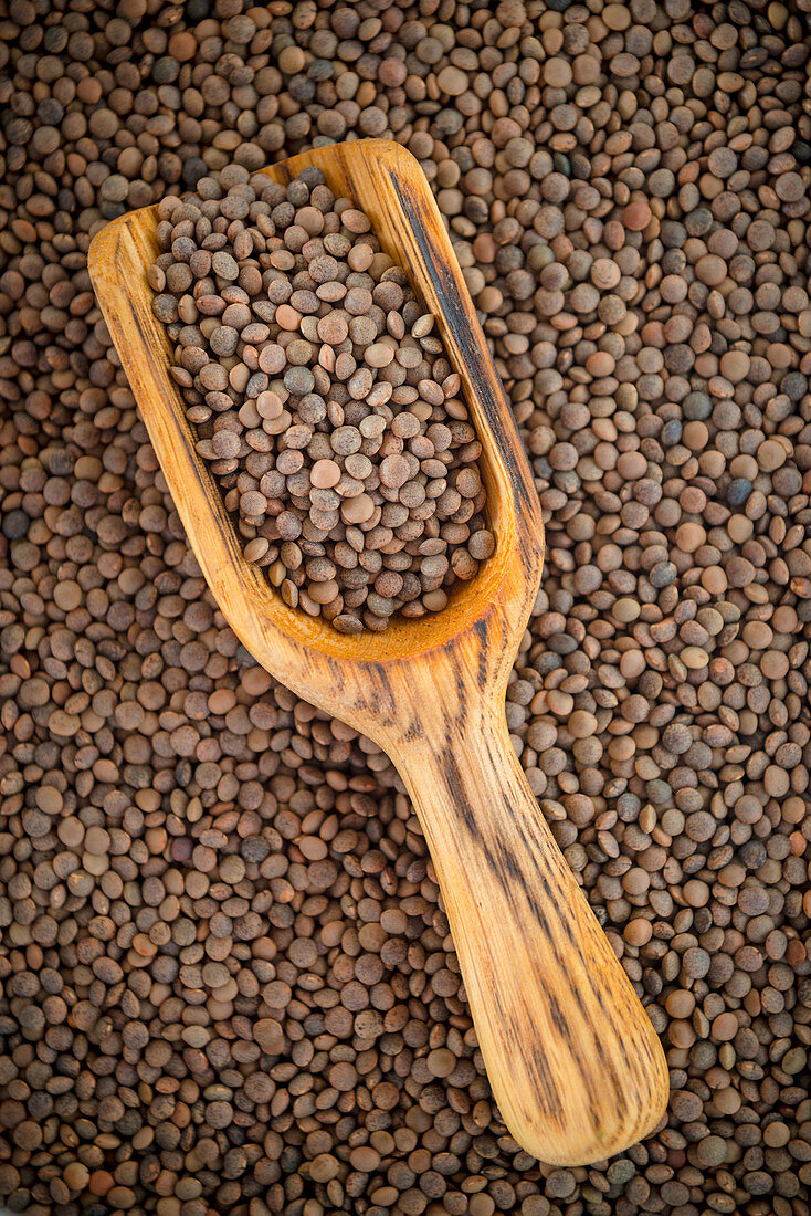 Brown Lentils with a scoop