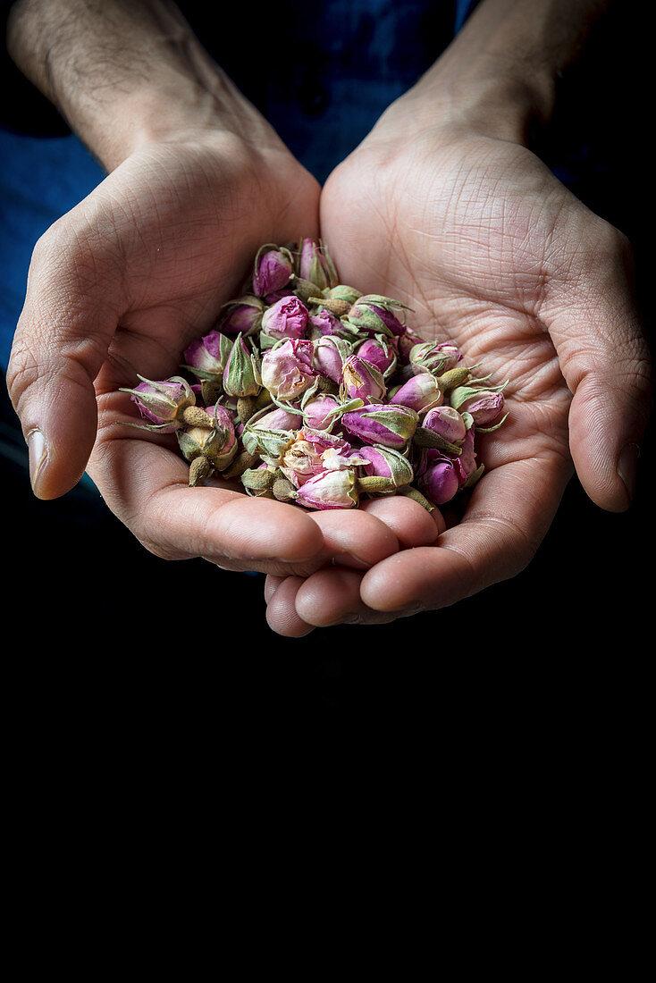 Rosebuds in hand