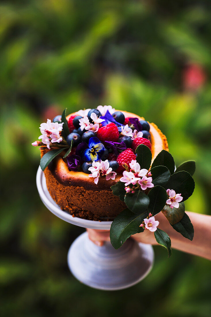 Baked cheesecake with mixed berries and flower toppings