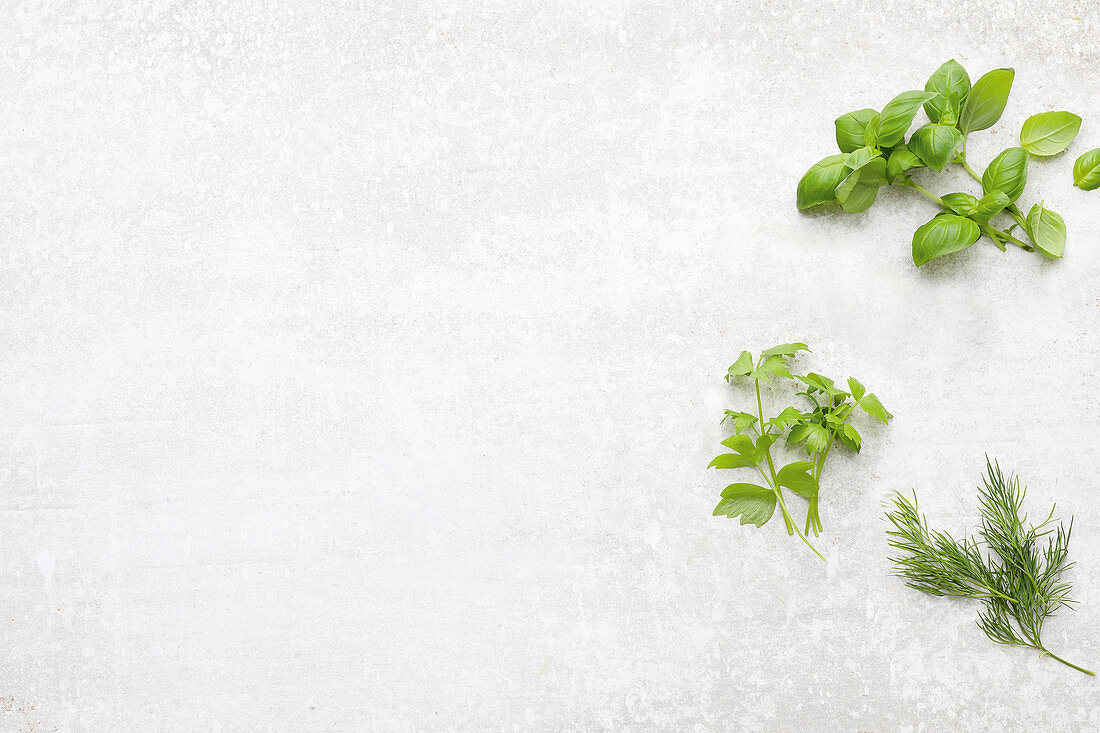 Basil, lovage and dill on a light background