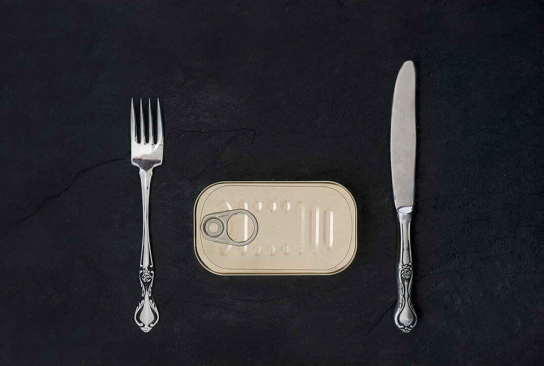 A closed tin of sardines with a knife and fork