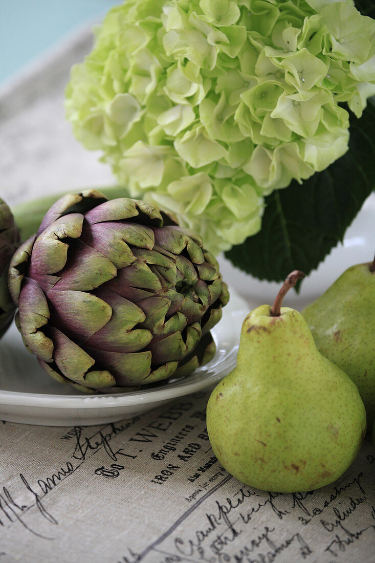 Still life with artichoke, hydrangea blossom and pears