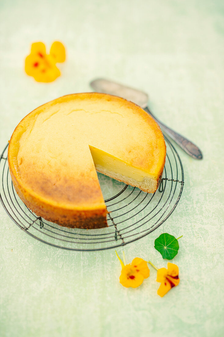 Vegan cheesecake with substitute Skyr and vanilla pudding