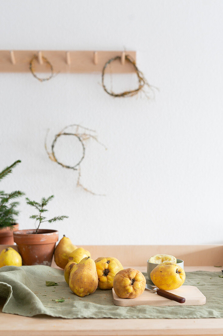 Quinces and fir trees on a table
