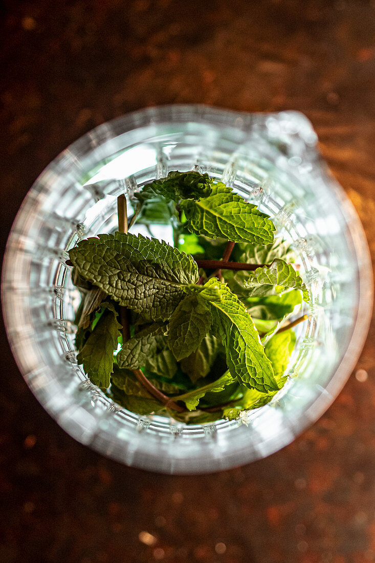Top view of glass cup with heap of fresh mint leaves placed on table in bar