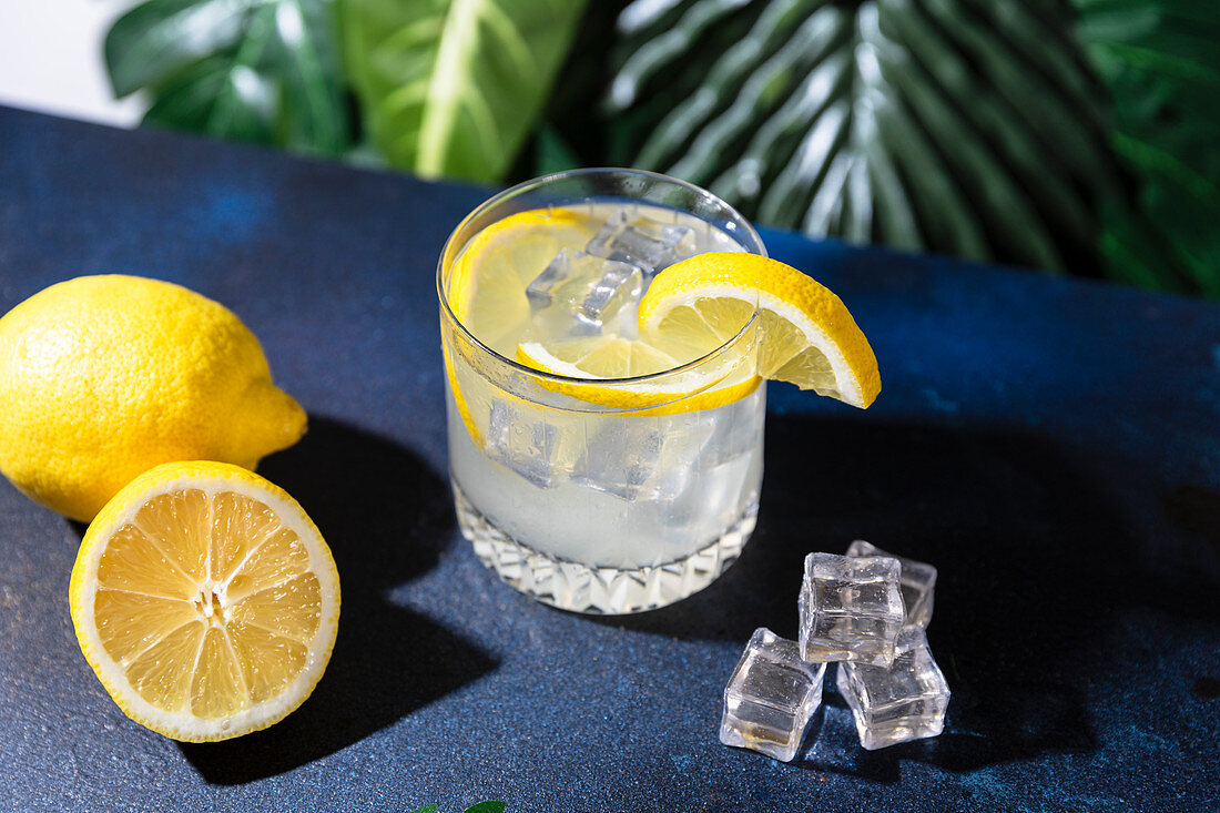 Glass of cold refreshing alcohol drink with ice cubes garnished with lemon slice and placed on table in bar