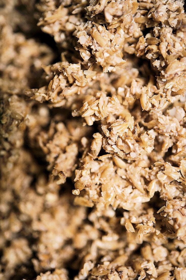 Grain mash for making beer